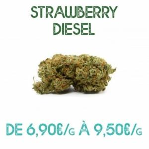 Strawberry Diesel CBD en vente sur Marie-Jeanne d'Arc de 6,90€/g à 9,50€/g