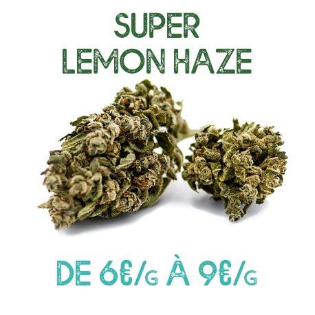 Super Lemon Haze CBD en vente sur Marie-Jeanne d'Arc de 6€/g à 9€/g