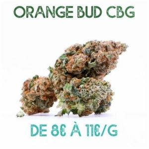 Orange Bud CBG en vente sur Marie-Jeanne d'Arc de 8€/g à 11€/g