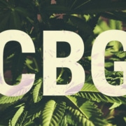 https://www.royalqueenseeds.fr/blog-cbg-un-cannabinoide-affichant-un-potentiel-medical-massif-n508