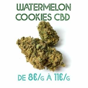 Watermelon Cookie CBD en vente sur Marie-Jeanne d'Arc de 8€/g à 11€/g