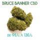 Bruce Banner CBD en vente sur Marie-Jeanne d'Arc de 9€/g à 13€/g