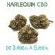 Harlequin CBD en vente sur Marie-Jeanne d'Arc de 3,40€/g à 5,20€/g