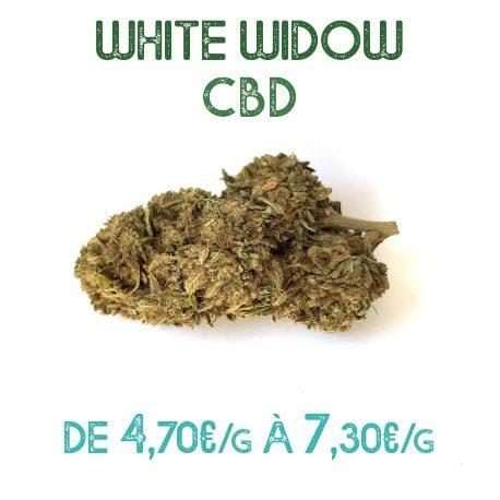White Widow CBD en vente sur Marie-Jeanne d'Arc de 4,70€/g à 7,30€/g
